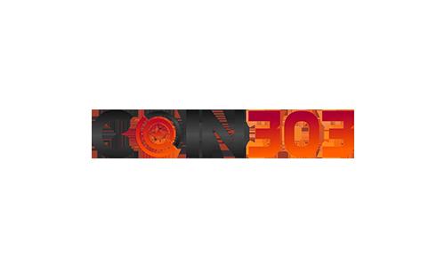 coin303