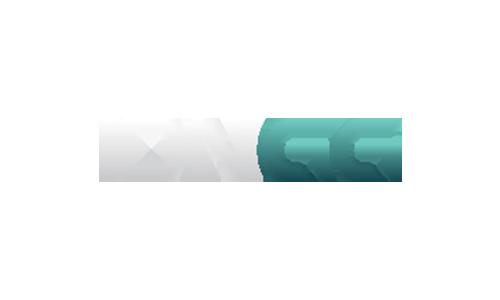 idngg
